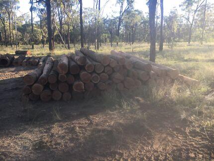 Iron bark Timber