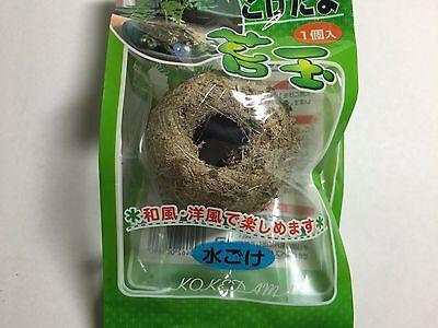 100% Natural Moss Ball BONSAI KOKEDAMA Sphagnum Moss Made in japan