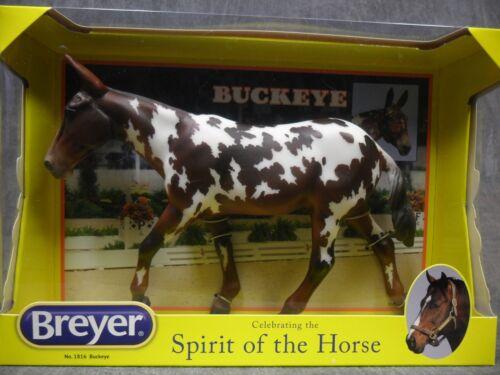 Breyer NEW * Buckeye * 1816 Spotted Mule Dressage Traditional Model Horse