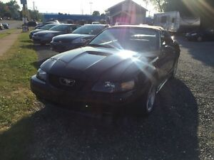 2000 MUSTANG GT CONVERTIBLE! 5 SPEED!