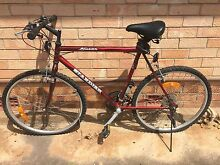 Men's mountain bike for sale Renown Park Charles Sturt Area Preview