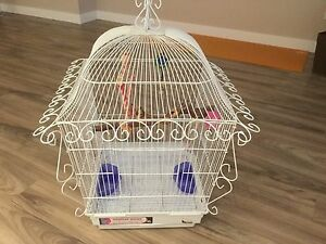 Medium size bird cage