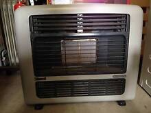 Rinnai gas heater Grose Wold Hawkesbury Area Preview