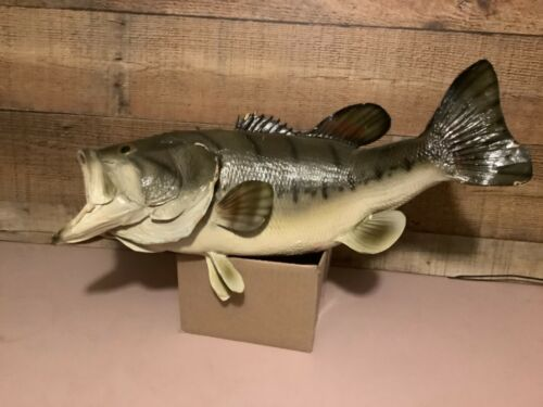 Large Mouth Bass Fish Wall Mount Taxidermy