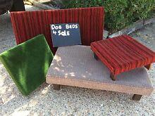 Dog & Cat Beds!!! Shailer Park Logan Area Preview