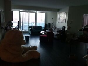 1 huge room for rent in a  beautiful 3 BDR apartment