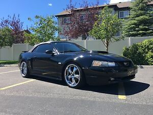 2003 Ford Mustang GT Convertible *MINT*