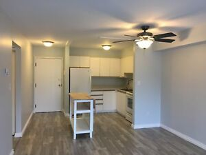 Updated 2 bed in great, central location - 401-310 Kingsdale