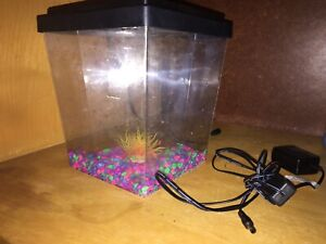 Fish tank perfect for a Betta
