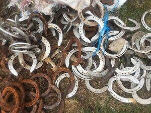 Horseshoe Canterbury Canterbury Area Preview