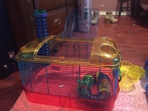 Hamster cage and more