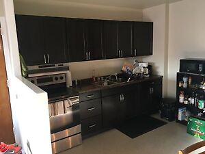 Newly Renovated, Open Concept Two Bedroom