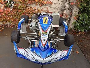 Go kart package East Maitland Maitland Area Preview