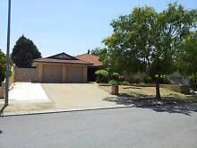 FAMILY HOME IN BROCKMAN PARK, BULL CREEK, ROSSMOYNE SHS ZONE Bull Creek Melville Area Preview