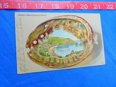 1907 Avalon Bay Catalina Island California Postcard Souvenir Abalone Shell Bordr