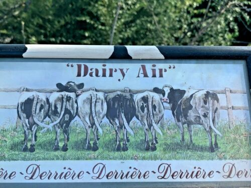 RARE Holstein COW DAIRY AIR Derriere BOTTOM END Tails Udder Picture Art ❤️sj8j