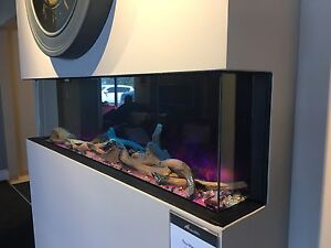 Astonishing 3 Sided Fireplace Buy New Used Goods Near You Find Download Free Architecture Designs Rallybritishbridgeorg