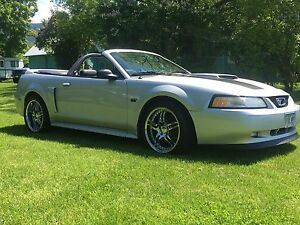 2000 Mustang GT Supercharged