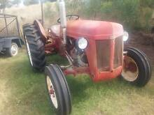 Massey Grey Fergy Tractor TE20 with Implements Wilsonton Toowoomba City Preview