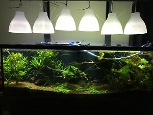 Selling my Substrate /Gravel for Planted tank