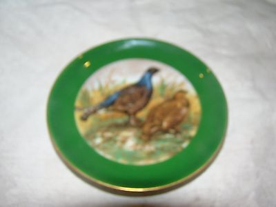 Ak Plate 205
