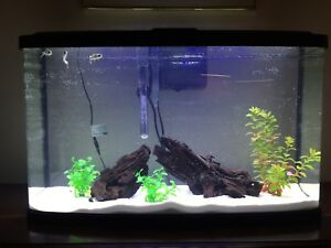 Fluval Vista Panoramic View Aquarium 23 Gallon