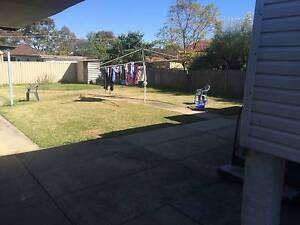 2 Bedroom House. New Carpet and Bathroom Merrylands Parramatta Area Preview