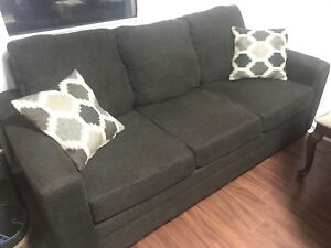 2 year old couch for sale !