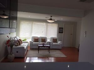 Refreshingly Renovated House for Rent at very convenient location Dover Gardens Marion Area Preview