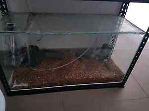 fish tank for sale Bedford Bayswater Area Preview
