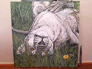 ART FOR SALE. African lion. Honey bee Beldon Joondalup Area Preview