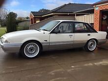 1986 Vl commodore manual suit Holden ford turbo v8 vk buyer Albury Albury Area Preview