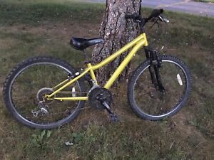 "24"" Kids Mountain Bike"
