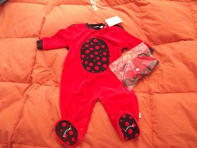 NWT New Ladybug Set 12 months Infant Velour Hat 2 Piece Outfit Costume Halloween (Baby Ladybug Costumes)