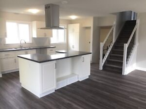 Beautifully renovated house in South Patterson