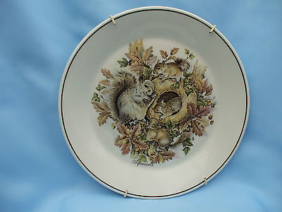 """Collectable Amorite 10-89 Family of Squirrels 8"""" Ceramic Plate with Plate Hanger"""