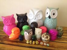 Owl Collection Fremantle Fremantle Area Preview