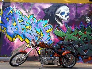 Harley Davison show bike