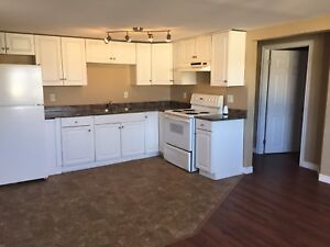 Walk to MUN. 3br Open Concept, Parking, Washer/ Dryer included.