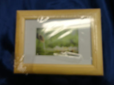 Holz Rahmen für 4 Bilder  Foto 10x15 cm Echtholz natur mit Klarglas 19 x 14,5 cm ()