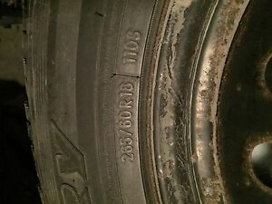 winter tire 265/60r18 with rims