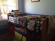 Single loft bed Elderslie Camden Area Preview