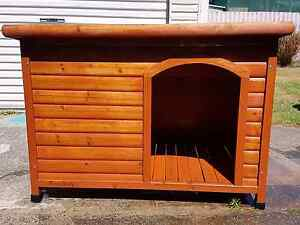 Paws Only large dog kennel Biggera Waters Gold Coast City Preview