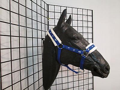 New Running Horse Fleece Lined Padded Halter / Full size Royal Blue