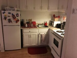 Furnished bachelor apartment  for sublet ,June and July
