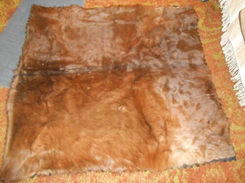 Auburn HORSE-HAIR & Wool Carriage BLANKET & MITTENS 100 yrs old Excellent cond.