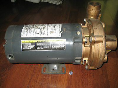 Teel 3 Hp Straight Centrifugal Pump 3 Phase 3 Hp Part 4xz04 New Old Stock