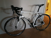 GIANT Road Bike! Huntingdale Gosnells Area Preview