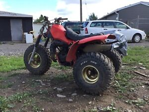 Looking for parts for my 1983 ATC 250R