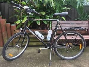 Adult, Racing Bike, Dual Shimano Gears .. Belmore Canterbury Area Preview